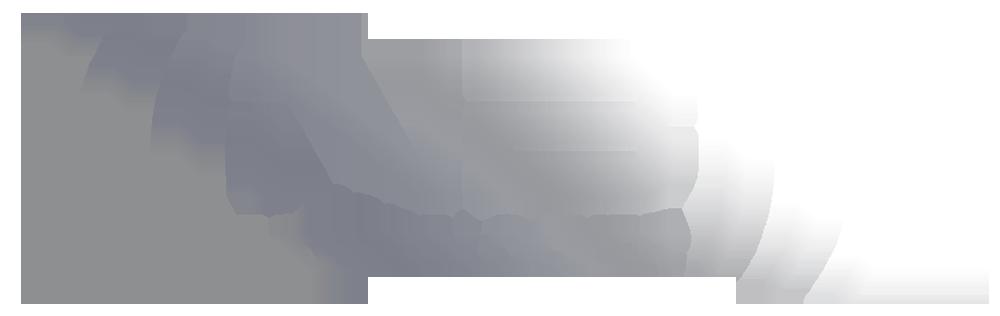 nb_logo_silber